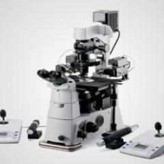 nikon-eppendorf-microscope