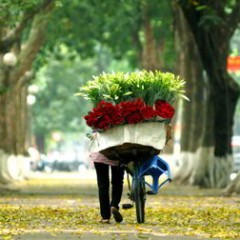 hanoi-city-tour-6